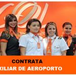 GOL LINHAS AÉREAS CONTRATA AUXILIAR DE AEROPORTO – salário + benefício + VA + VR + VT + SV – Assistência médica e benefícios de viagens.